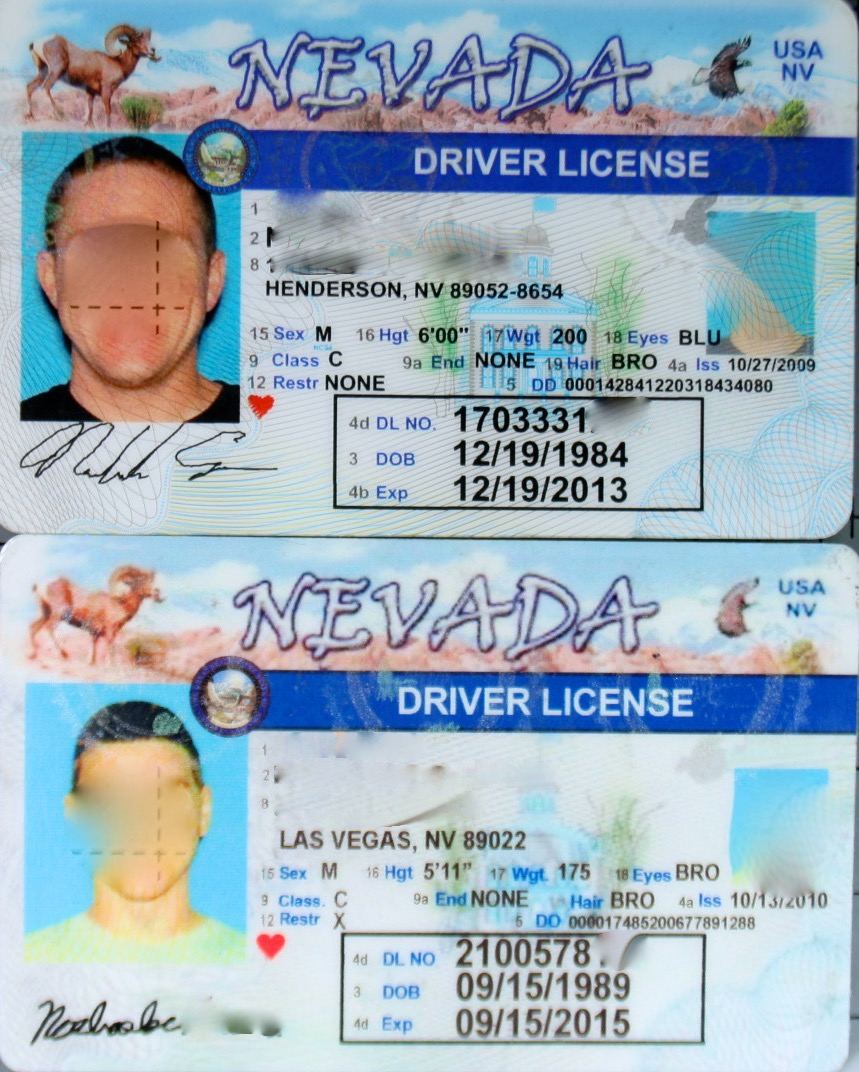 Can You Spot a Fake ID? (Multi-Page) | The ID Experts
